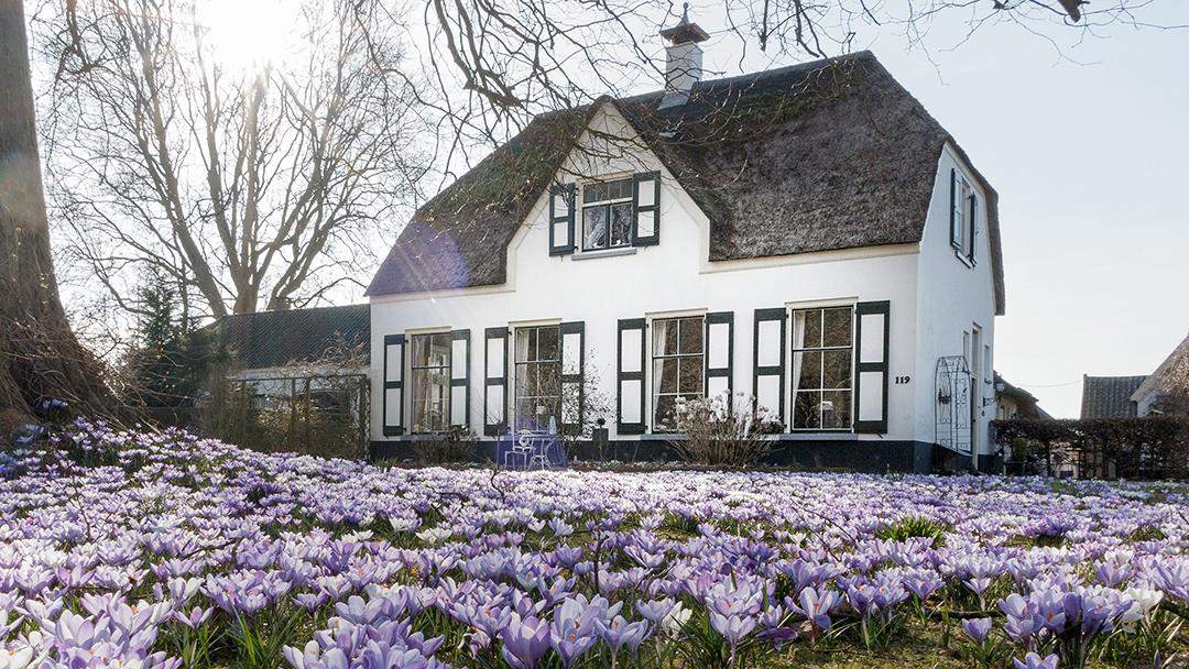 Vb-01_De Randerhof in het voorjaar